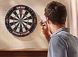 Viper AIM 360 Tournament Bristle Steel Tip