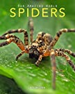 Spiders: Amazing Pictures & Fun Facts on Animals in Nature (Our Amazing World Series Book 7), by Kay de Silva