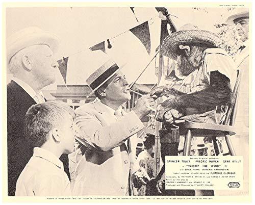 Inherit The Wind Original Lobby Card Spencer Tracy Gene Kelly Monkey Greet 1960 from Silverscreen