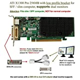 Dell ATI Radeon X1300 Pro 256MB PCI-E Low Profile Video Card JJ461