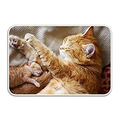 Kerr Juliet Animal Cats Welcome Doormat Indoor Bathroom, Kitchen,Floor Mats Rug Durable Non-Slip