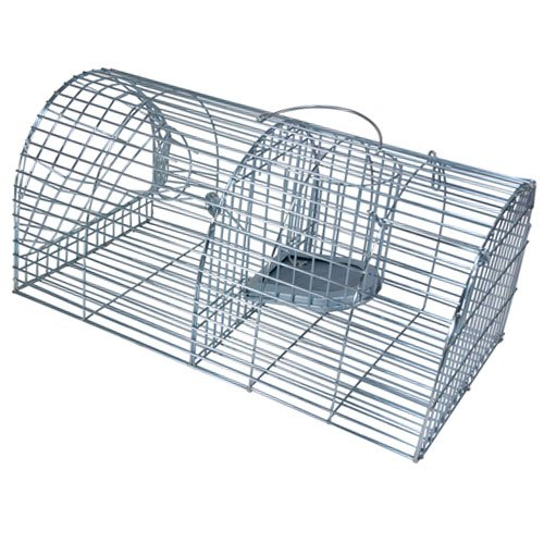 how to build a flying squirrel cage