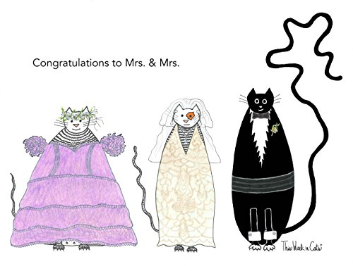 Greeting Cards Comical Cats Boxed Set of 6 5x7 Inches Blank Inside Congrats to Mrs. & Mrs.