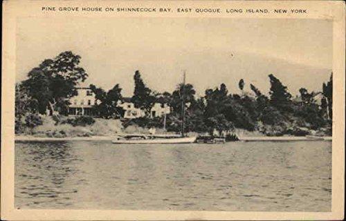 Pine Grove House on Shinnecock Bay Long Island, New York Original Vintage Postcard