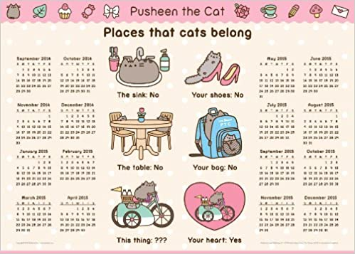 Places That Cats Belong - Pusheen the Cat: Amazon.es: Claire ...