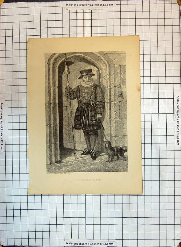 [Old Original Antique Victorian Print Man Beefeater Costume Tower London Dog 199G347] (Beefeater Costumes)
