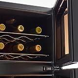 Wine Enthusiast Silent 21 Bottle Dual Zone Wine