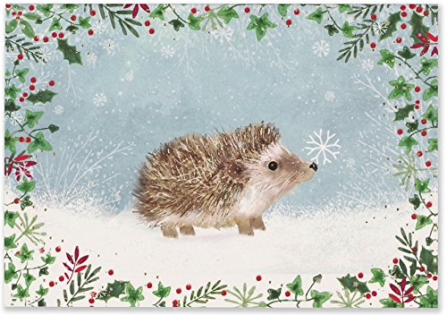 Happy Hedgehog Small Boxed Holiday Cards (Christmas Cards, Greeting Cards)