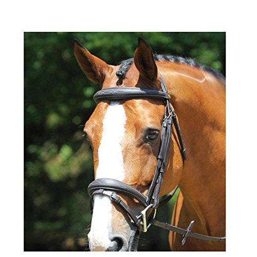 Bridon Agen protanner Nero Cavallo