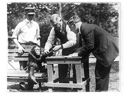 "Photography Poster - [Three men, one wearing badge, and orangutan(?) at the National Zoo, Washington, D.C.], Gloss finish, 24""x19"""