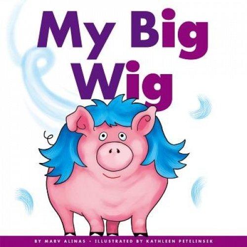 My Big Wig (Rhyming Word Families)