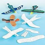 Baker Ross Lot de 6 Planeurs Oiseaux à colorier - Idéal pour les jeux en plein air