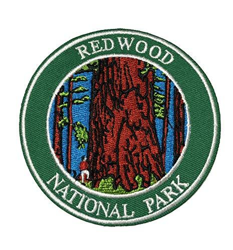 Explore Redwood - 3