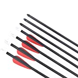 IRQ Pure Carbon Arrows for Archery 24inch Youth Arrows for Compound Bows Fletched Practice Arrows (Red Black, 6 Pack)