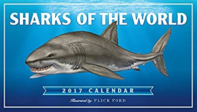 Sharks of the World Wall Calendar 2017