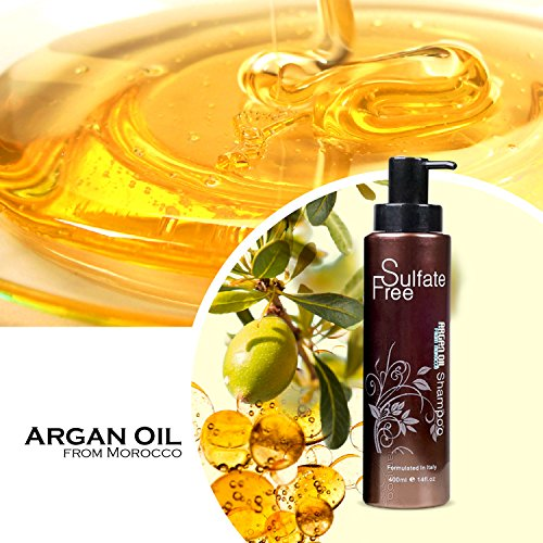 Moroccan Argan Oil Shampoo Sulfate Free Best For Damaged