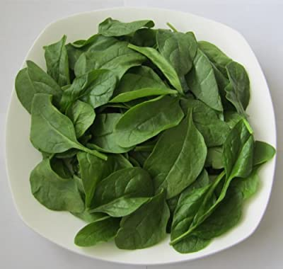 "2g (Approx. 150) Spinach Seeds ""Matador"" Rich in Vitamins, Excellent Taste, High Quality Variety 'Fresh Seeds - Best Before 12.2017!'"
