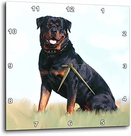 3dRose DPP_4367_2 Rottweiler Wall Clock, 13 by 13-Inch
