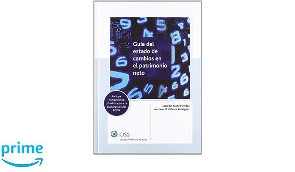 Guía del estado de cambios en el patrimonio neto: Amazon.es: Juan del Busto Méndez, Antonio M. Olleros Martínez: Libros