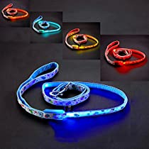 FONPOO FP3602 Fashion High Visibility LED Leash Glowing Pet Dog Cat Weatherproof Leash for Night Safety with Lollipops Print