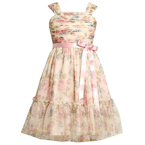 Bonnie Jean Big Girls' Floral Print Mesh Dress
