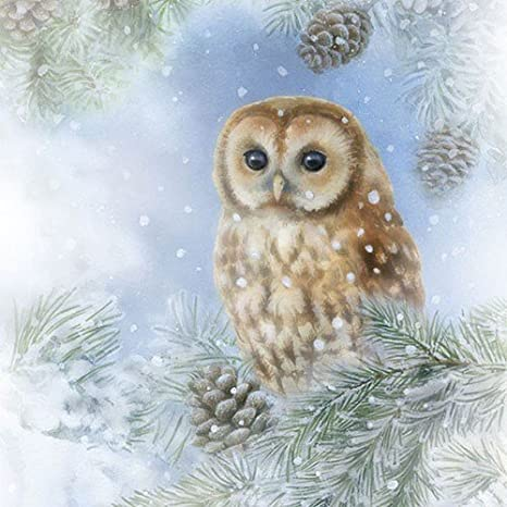 20 Paper Party Napkins Winter Owl Pack of 20 3 Ply Luxury Serviettes