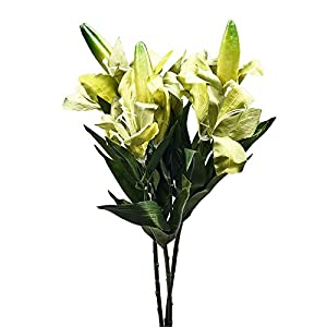 FYYDNZA 1 Pc 2 Head Flowers Vintage Simulation Lily Fake Artificial Flower For Home Wedding Party Table Decoration Display,03 1