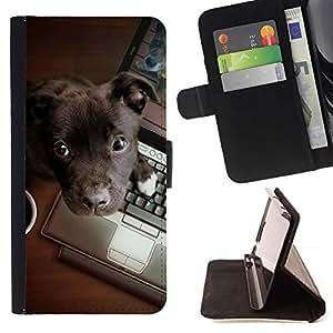 Momo Phone Case / Flip Funda de Cuero Case Cover - De Brown Labrador retriever Trabajo; - LG Nexus 5 D820 D821