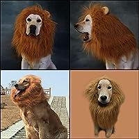 AOLVO Lion Mane Peluca Perro Disfraz de león Perro león Hombre con ...