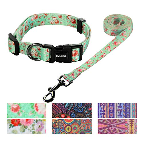 Ihoming Pet Collar Leash Set Halloween Bat Combo Safety Set for Daily Outdoor Walking Running Training Small Medium Large Dogs Cats Floral-GreenLake Small