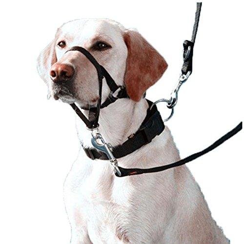 Be Good Dog Head Collar Halter Adjustable Nylon Loop Bite Bark Control Pet Dog Gentle Leader Leash for Walking Training Set of 4 Black M