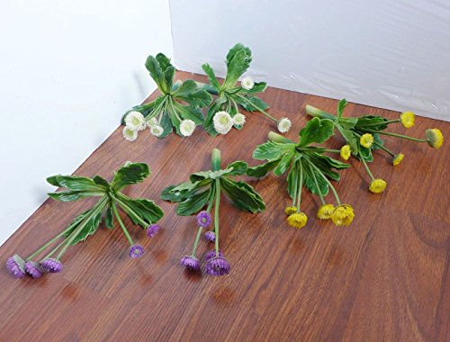 Sets of 6Pcs Mini Flowering Artificial Plants Succulents Grass Plastic, Cream Purple Yellow, Artificial Grasses Living Room Home Garden Landscape Decoration (No Vase Included) # W 2