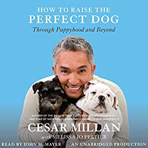 How to Raise the Perfect Dog Audiobook