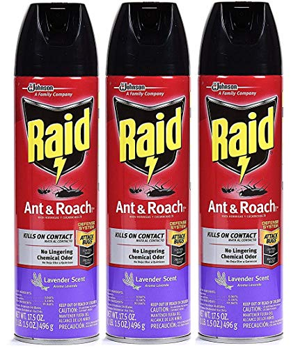 (Raid Ant & Roach Killer Insecticide Spray, 17.5 oz-3 PK (Lavender))