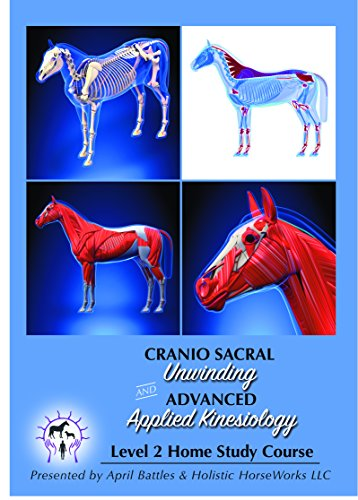 Holistic Horseworks Level 2 Equine Whole Body CranioSacral Unwinding And Advanced Applied Kinesiology Horse DVD Home…