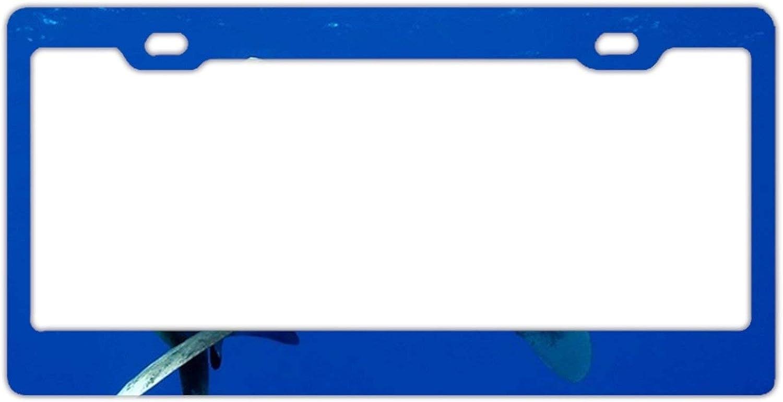 New Cool card License Plate Auto Car Tag Car Tags