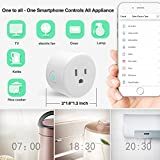 PECHAM 2 Pack WiFi Smart Plug Mini Plug, Remote Control Your Appliances Anywhere, Timing Function, Works with Alexa Echo/Google Home/IFTTT for Voice Control, No Hub Required Smart Socket