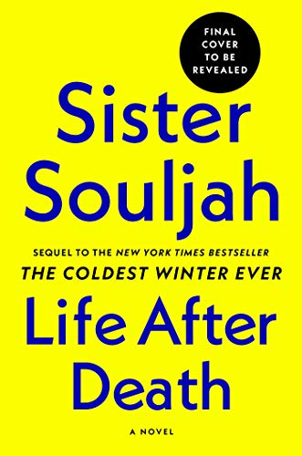 Book Cover: Life After Death: A Novel