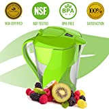 Premium Alkaline Water Filter Pitcher By PureGreen   3,5L Water Ionizer, Filters Fluoride, Lead & Bacteria   6 Layer Filtering System Cartridge For Healthy, Clean &Toxin-Free Mineralized Water