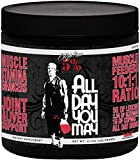Rich Piana 5% Nutrition All Day You May BCAA & Joint Recovery Drink (Watermelon) 17.2oz (465 Grams) 30 Servings Review