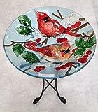 18%22 Red Bird Glass Bowl%2Fbirdbath and