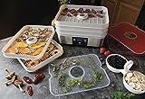 Hamilton Beach 32100A Digital Food Dehydrator, 5