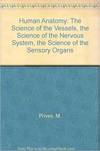 Human Anatomy The Science Of The Vessels The Science Of The