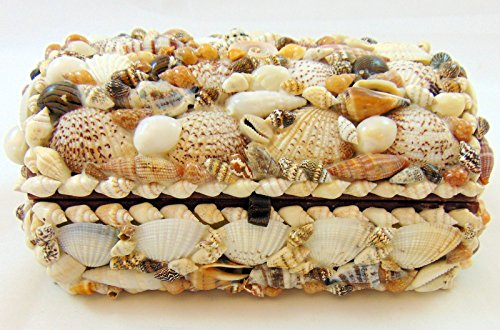 Real Natural Seashell Jewelry Trinket Box Nautical Sea Shell Beach Home Decoration Gift 7 Inches Long (Box Shell Trinket)
