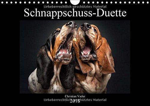 Schnappschuss-Duette (Wandkalender 2018 DIN A4 quer): Hunde schnappen nach Leckerchen - erstmalig zu zweit vor der Kamera. (Monatskalender, 14 Seiten ) (CALVENDO Tiere)