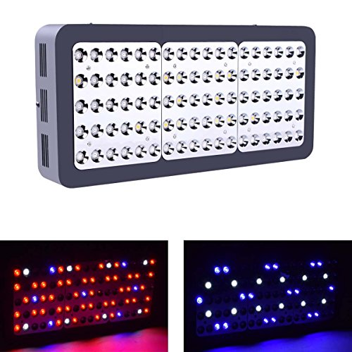 Veg/Bloom Switchable Full Spectrum 600W/900W/1200W LED Grow Light, LED Growing lamp for Greenhouse Indoor Hydroponic Plants,with Reflector (R900) by HollandStar