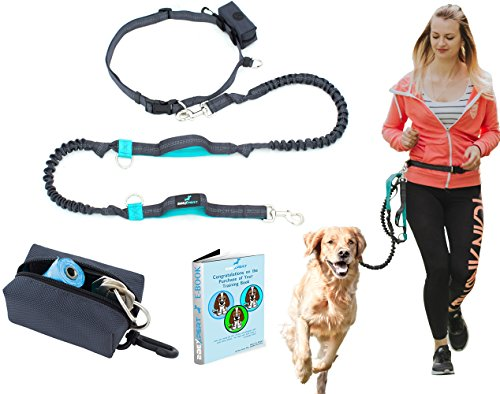hands-free-dog-leash-for-running-walking-hiking-top-quality-improved-retractable-dual-handle-bungee-