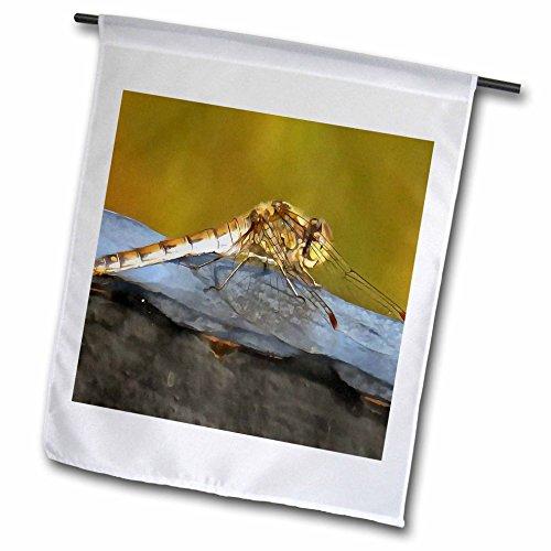 Taiche - Acrylic Painting - Dragonfly - Resting Dragonfly - 12 x 18 inch Garden Flag (fl_251992_1) (Gossamer Streamer)