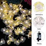 Christmas Flower Curtain String Lights, 100 LED with 8 Lighting Modes-UL Listed Power Supply, Perfect for Wedding/Xmas/Bedroom/Party Decorations [Energy Class A]