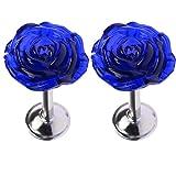 YING CHIC YYC 2Pcs Crystal Rose Flower Medallion Drapery Holdback Curtian Wall Hook Curtain Rod (Sapphire Blue)